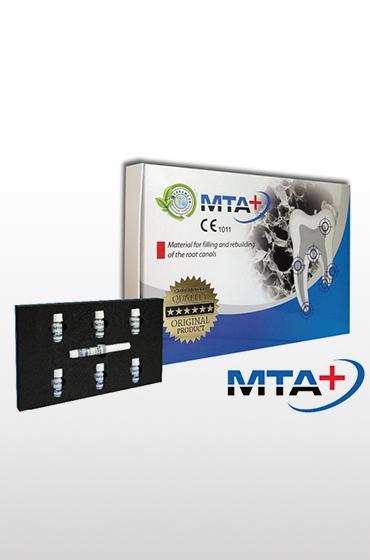 MTA+6